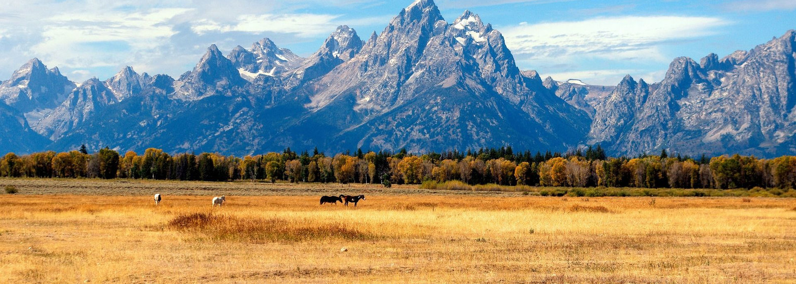 grand-tetons-in-the-fall-3857341_1920-co