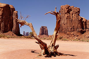 Spot Monument Valley