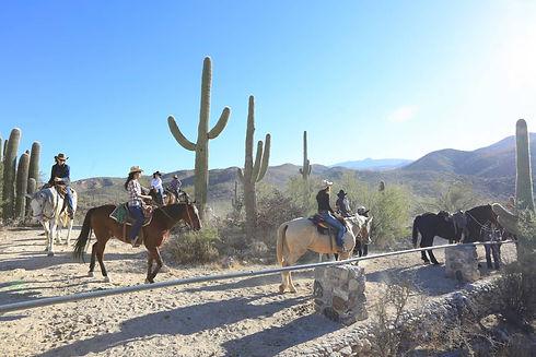 Balade en cheval en Arizona
