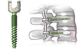 Orthopedic 500x300.jpg