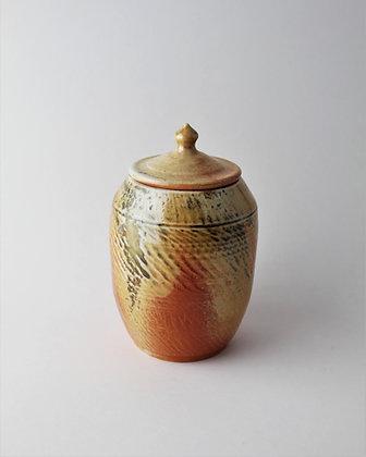 Wood Fired Shino Jar