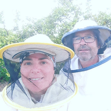Bees in Tubes