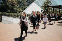 Image taken from 2019 season at the Adelaide Botanic Gardens