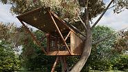 Treehouse A_Photo - 5.jpg