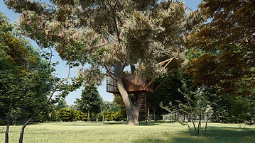 Treehouse A_Photo - 1.jpg