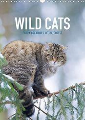 Wild Cats Calendar 2020