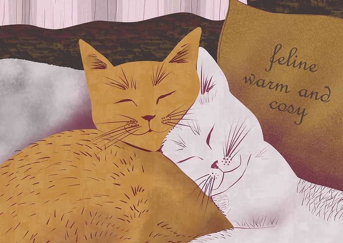 Warm and Cosy - Cat Postcard
