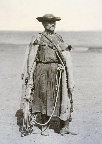 Hortobagy horse wrangler - Postcard