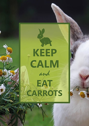 """Keep Calm and Eat Carrots"" - Postcard"