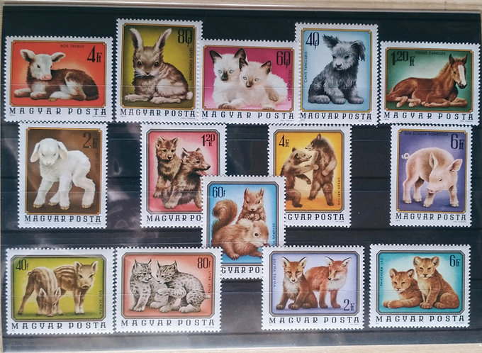 Animals Baby Stamps