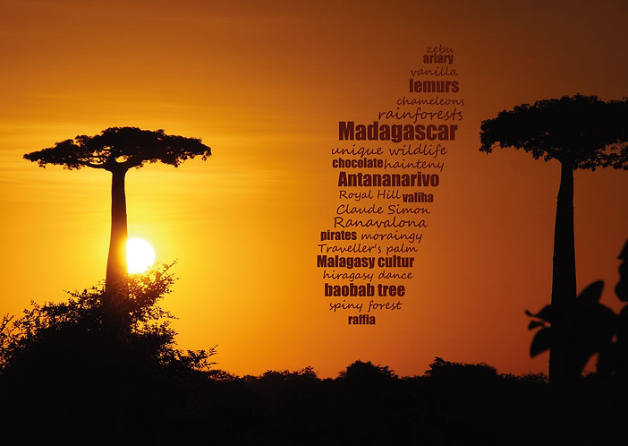 Madagascar WordCloud postcard