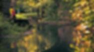Pont sur le Lion à St Genis Pouilly