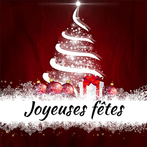 Joyeuses fêtes de Noel et de fin d'année.