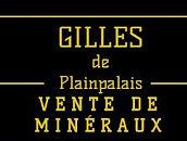 Gilles de Plainpalais du marché aux puces de Genève