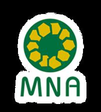 logo-MNA.png
