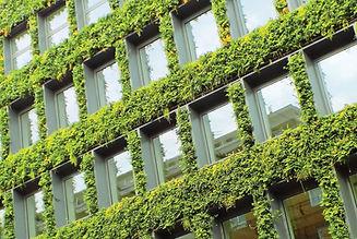 grass-walls-2651587.jpg