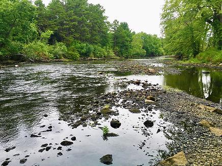 Nashua River Photo 2.jpeg