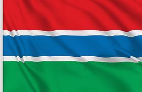 drapeau gambie.jpg