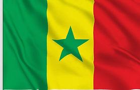 drapeau senegal.jpg