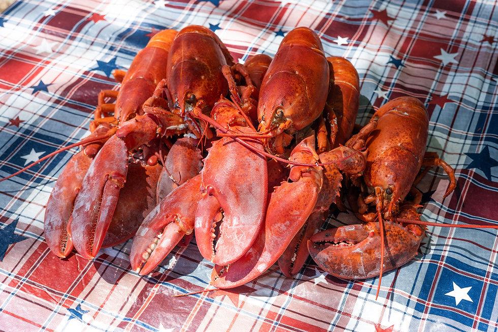 Fresh Maine Lobster Shipped1.jpg