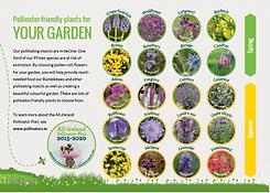 Flyer_Plants_Thumbnail.png