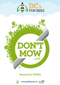 Dont Mow_Planted Sign_Thumbnail.png