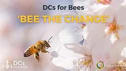 Pollinator Webinars - Event Images.png