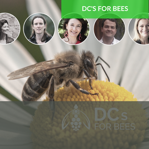 Cross Pollination – People, business & biodiversity  working together to save our pollinators