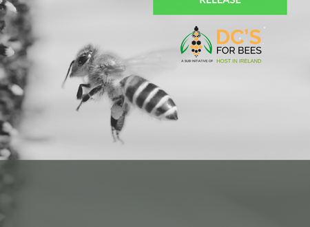 Ireland's first industry-led initiative to help save the bees - Press Release