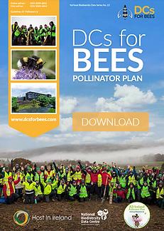 Pollinator Plan.PNG