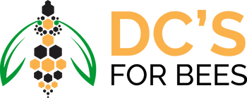 DC-SOURCE-transperant.png