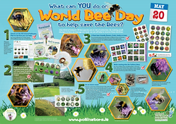 POSTER_World Bee Day_Thumbnail.png
