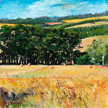 THE HEDGEROWS
