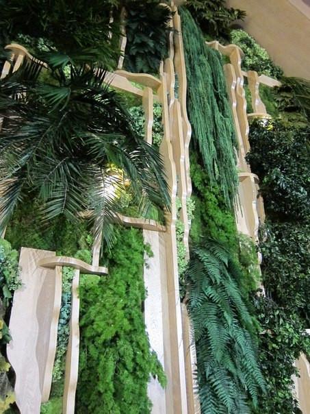 Зелёные стены из растений