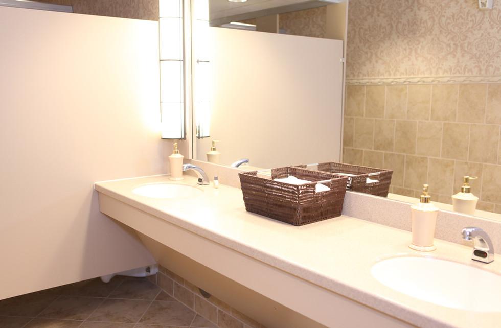 Hillsdale College Bathroom Countertop