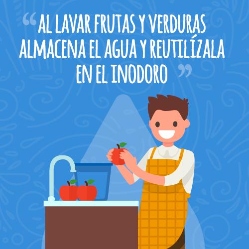 Tips-De-Agua-10