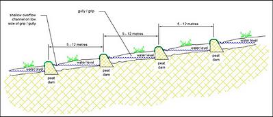 LR diagram.png