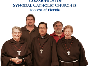 Franciscan Delegates to the 2017 Diocesan Synod