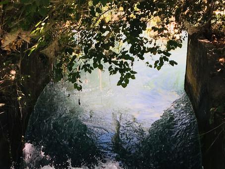 Levande vatten - Samlingen vid korset i Hassela
