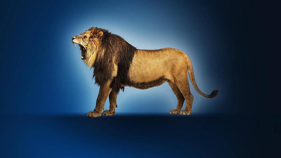 Lejonet-ryter-BG.jpg