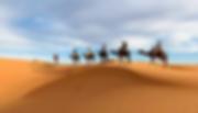 Marocco Valle dei Rif.webp
