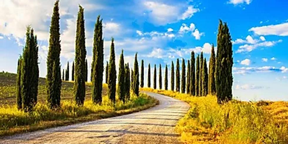 """Trekking """"La Via Francigena"""""""