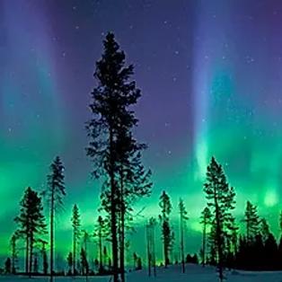 """Trekking """"Lapponia Aurora Boreale"""""""