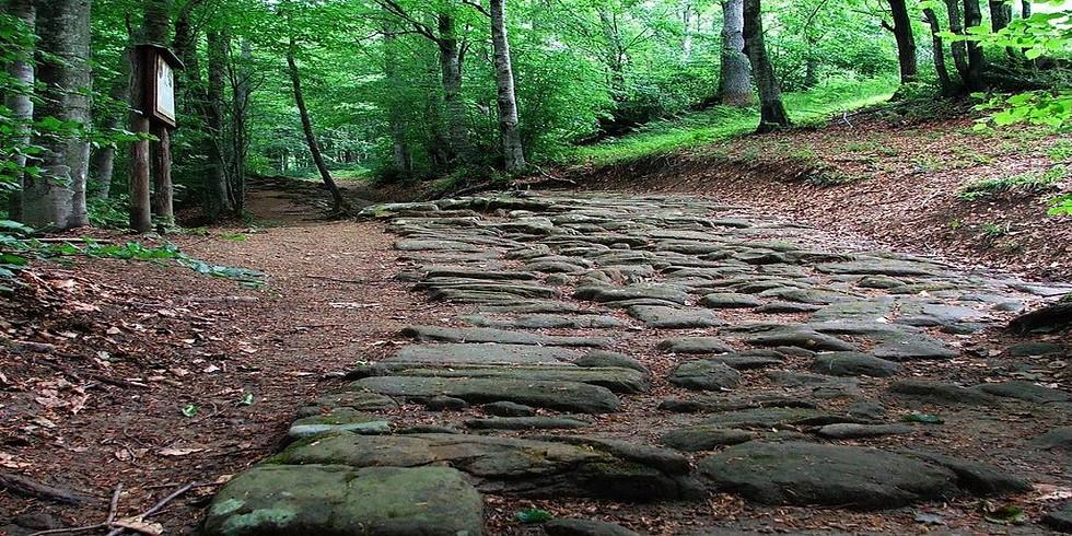 """Trekking """"La Via degli Dei"""""""