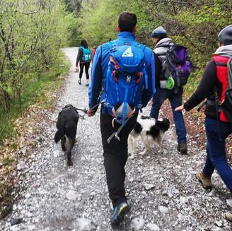 Escursioni con gli Amici a 4 Zampe