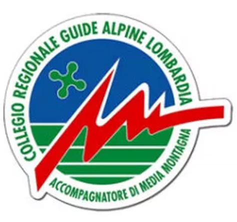 Logo Guide.jpg