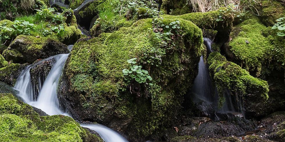 Escursione Fotografica alle Sorgenti del fiume Enna