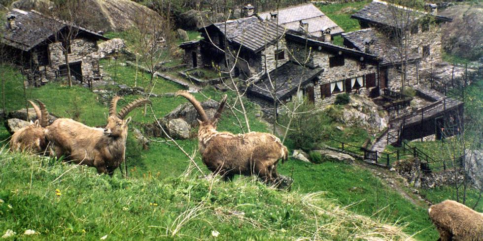 """Escursione """"L'Antico Borgo di Maslana"""""""