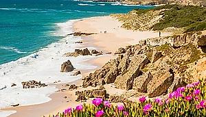 Portogallo La Rota Vicentina.webp
