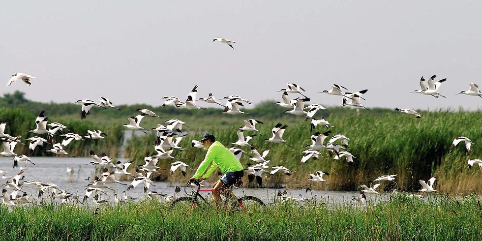 """Bike Tour """"Dal Lago al Mare"""""""